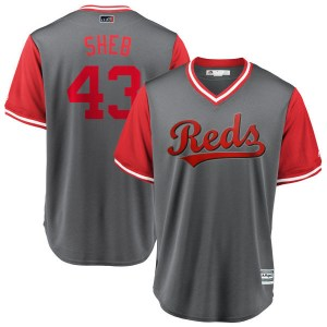 """Scott Schebler Cincinnati Reds Youth Replica """"SHEB"""" Gray/ 2018 Players' Weekend Cool Base Majestic Jersey - Red"""